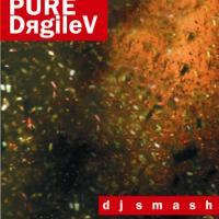 PURE-DяgileV - CD2