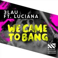 We Came To Bang