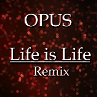 Life Is Life (Dj Fisun Radio Edit)