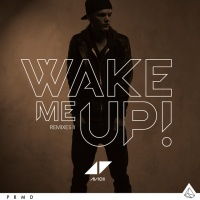 Wake Me Up (EDXs Miami Sunset Remix)