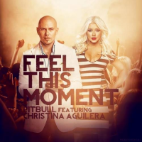 Feel This Moment (Sidney Samson Remix)