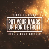 Put Your Hands Up For Detroit (Holl & Rush Bootleg)