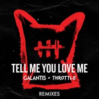 Tell Me You Love Me (Two Can Remix)
