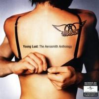 Young Lust: The Aerosmith Anthology CD 2
