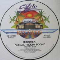 No! Mr. Boom Boom (Vinyl)