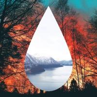 Tears (feat. Louisa Johnson) [99 Souls Remix] - Single