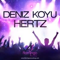 Hertz WEB