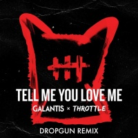 Tell Me You Love Me (Dropgun Remix)