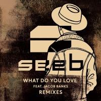 What Do You Love (Zac Samuel Remix)