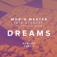 DREAMS FT. FRIDA HARNESK (PART 2)