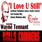 I Love U Still (Incl. Anthony Nicholson, Seb Skalski, Jonny Montana Mixes)