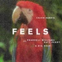 Feels - Single