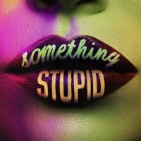 Something Stupid (Remixes)