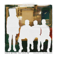 Leave Before You Love Me - Single