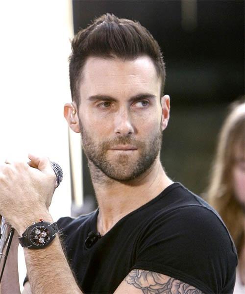 Лидер группы Maroon 5 попал в проклонницу микрофоном